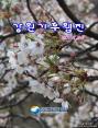 강원기후 2014년 04월호