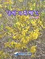 강원기후 2015년 04월호