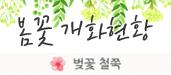 봄꽃 개화현황