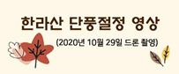 한라산 단풍절정 영상 (2020년 10월 29일 드론 촬영)