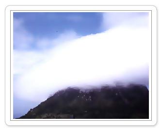 층운-1987년 제주도삼방산 박홍하